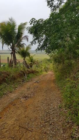 Vendo fazenda em Nova Almeida - Foto 17
