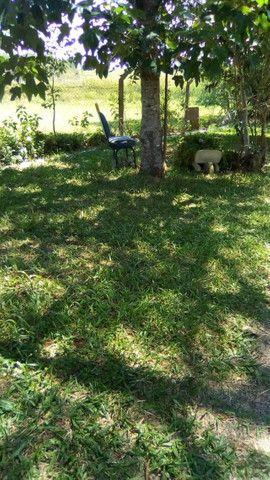 Velleda oferece sítio 4890m², c/ jardins casa, 5 açudes, condomínio fechado - Foto 18