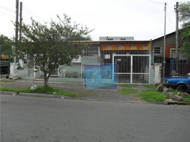 Terreno comercial à venda, Jardim Floresta, Porto Alegre. - Foto 3