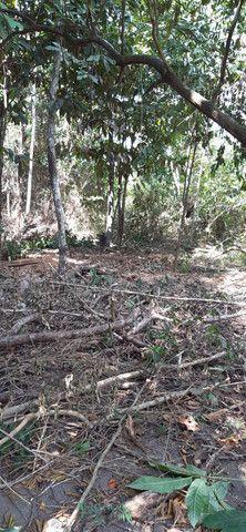 Terreno em Belterra 10x116 - Foto 3