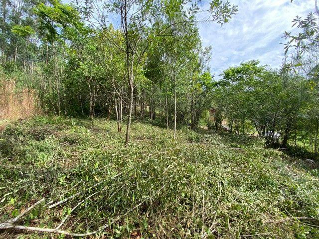 Sitio de 1 hectare em Padilha, barbada do dia - Foto 3