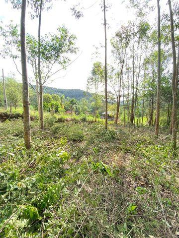 Sitio de 1 hectare em Padilha, barbada do dia - Foto 8