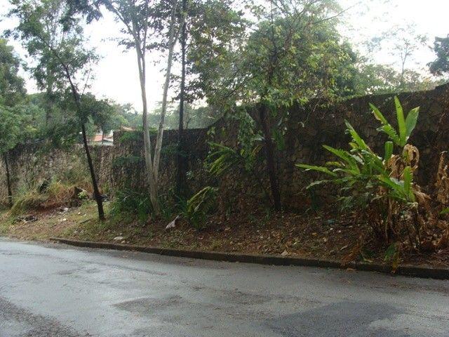 BELO HORIZONTE - Terreno Padrão - Braúnas - Foto 5