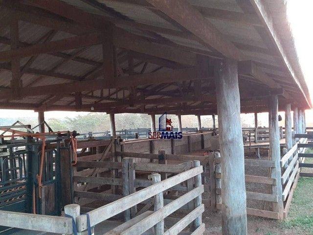 Fazenda à venda, por R$ 7.900.000 - Centro - Alta Floresta D'Oeste/RO - Foto 6
