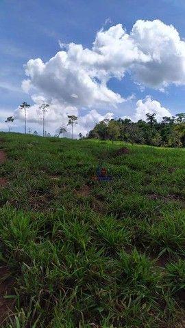 Sítio à venda, 508200 m² por R$ 670.000 - Zona Rural - Vale do Anari/RO - Foto 5