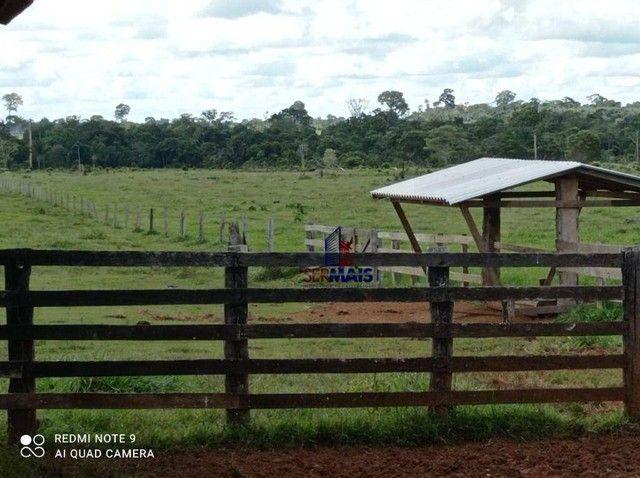 Fazenda à venda, por R$ 8.370.000 - Zona Rural - São Francisco do Guaporé/RO - Foto 14