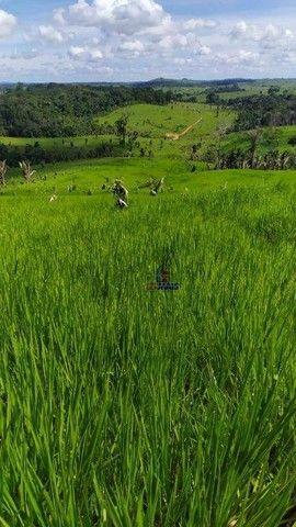 Sítio à venda, 508200 m² por R$ 670.000 - Zona Rural - Vale do Anari/RO - Foto 18