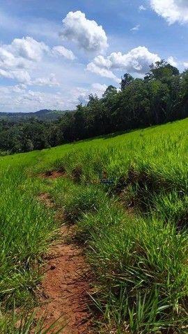 Sítio à venda, 508200 m² por R$ 670.000 - Zona Rural - Vale do Anari/RO - Foto 7