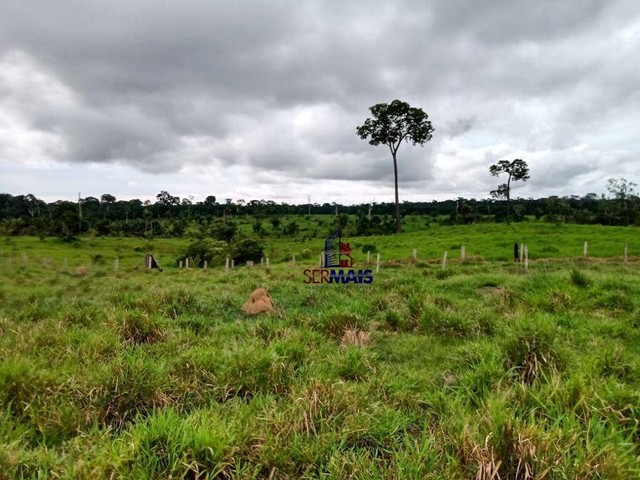 Fazenda à venda, por R$ 35.000.000 - Zona Rural - Machadinho D'Oeste/RO - Foto 3