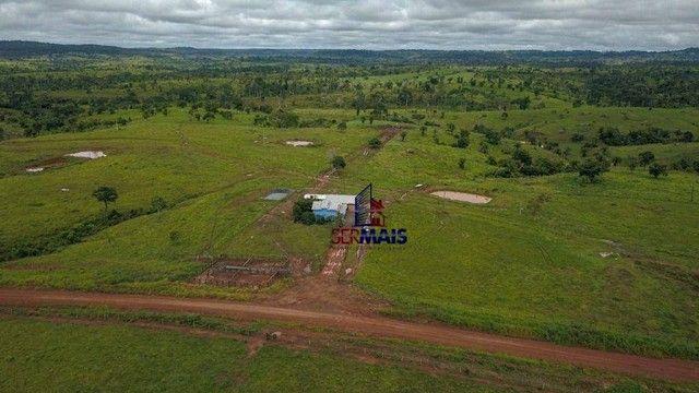 Fazenda com à venda, por R$ 14.000.000 - Centro - Alta Floresta D'Oeste/RO - Foto 3