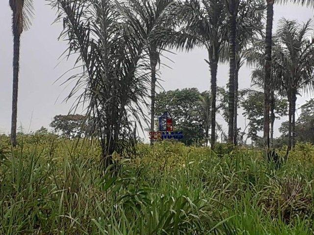 Sítio à venda, por R$ 400.000 - Área Rural de Porto Velho - Porto Velho/RO - Foto 7