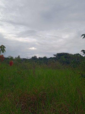Excelente Fazenda 150 alqueires á 83 km de Humaitá  - Foto 2