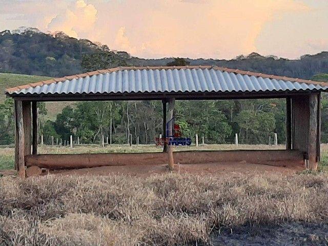 Fazenda à venda, por R$ 7.900.000 - Centro - Alta Floresta D'Oeste/RO - Foto 8