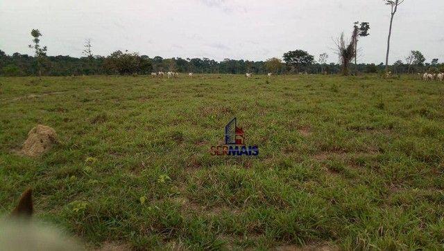 Fazenda à venda, por R$ 10.925.000 - Área Rural de Porto Velho - Porto Velho/RO - Foto 19