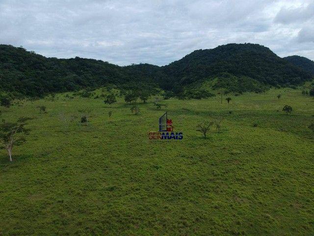 Fazenda à venda, por R$ 19.950.000 - Santa Felicidade - Alta Floresta D'Oeste/RO - Foto 7