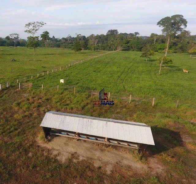 Sítio à venda por R$ 1.680.000 - Área Rural de Porto Velho - Porto Velho/RO - Foto 4