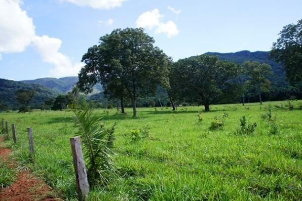Fazenda 1750 ha N.S. Livramento MT - Foto 4