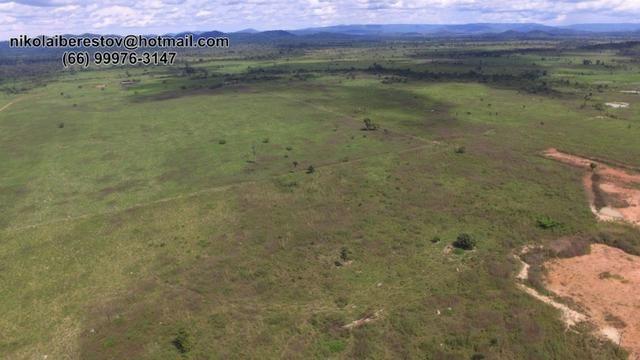 Fazenda 872 hectares nordeste mt nikolaiinoveis
