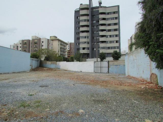 Terreno para alugar, 536 m² por r$ 2.300/mês - juvevê - curitiba/pr