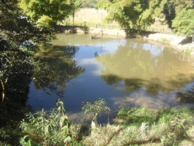 Fazenda com 57 hectares em Carmopolis de Minas - Foto 2