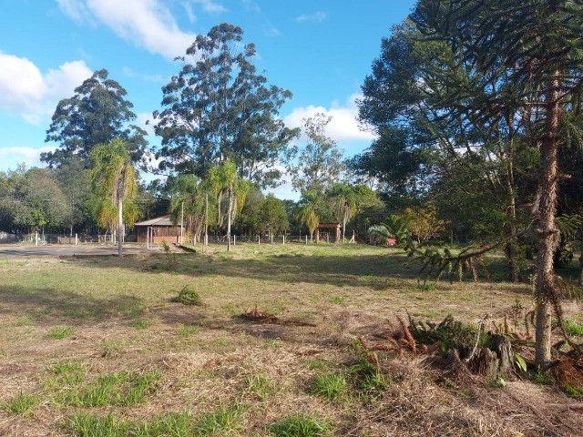 Velleda oferece B.A.R.B.A.D.A 2 hectares com cancha de futebol e frutíferas - Foto 11