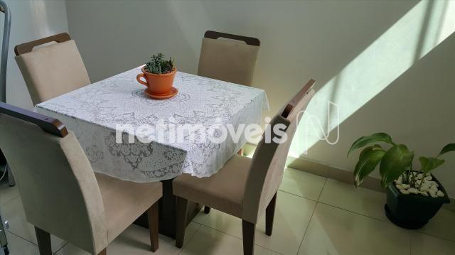 Apartamento à venda com 3 dormitórios em Santo andré, Belo horizonte cod:725176 - Foto 13