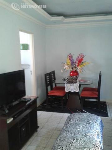 Apartamento à venda com 2 dormitórios em Camargos, Belo horizonte cod:561062 - Foto 2