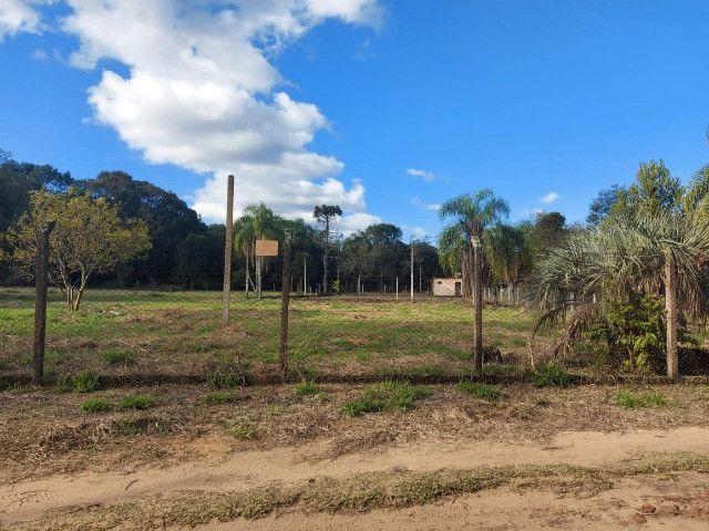 Velleda oferece B.A.R.B.A.D.A 2 hectares com cancha de futebol e frutíferas - Foto 2