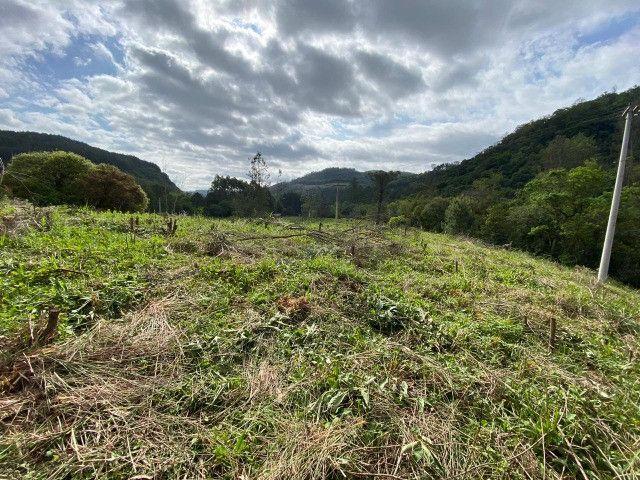 Sitio de 1 hectare em Padilha, barbada do dia - Foto 4