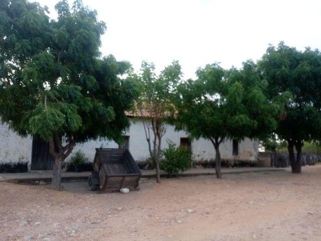 Fazenda em Iracema-CE - Foto 2