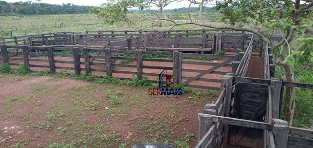 Fazenda com 1 dormitório à venda, por R$ 10.500.000 - Zona Rural - São Francisco do Guapor - Foto 20