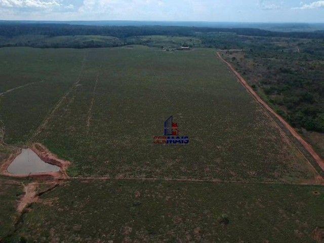 Fazenda à venda por R$ 44.645.850 - Centro - Parecis/Rondônia - Foto 12