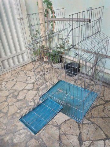 Viveiro para calopsita e papagaio
