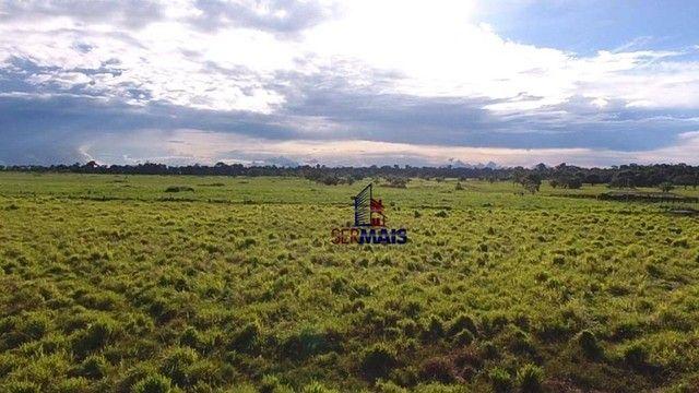 Fazenda à venda, por R$ 14.040.000 - Zona Rural - São Francisco do Guaporé/RO - Foto 7