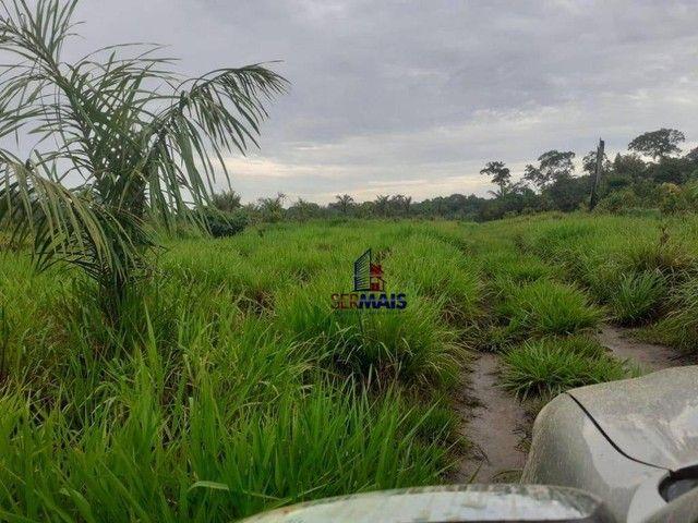 Sítio à venda, por R$ 400.000 - Área Rural de Porto Velho - Porto Velho/RO - Foto 5