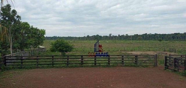 Fazenda com 1 dormitório à venda, por R$ 10.500.000 - Zona Rural - São Francisco do Guapor - Foto 9
