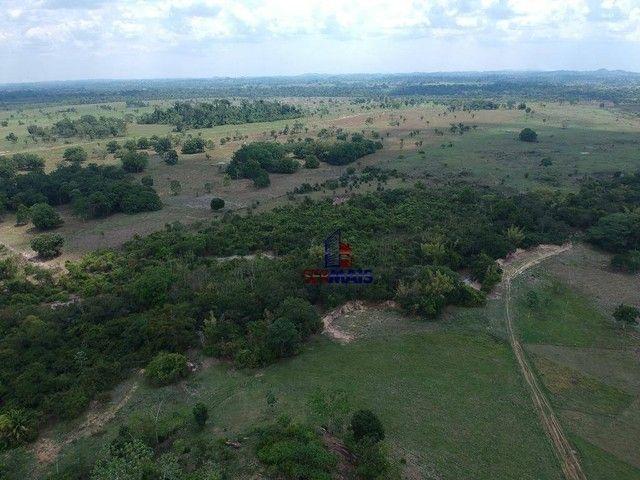 Sítio à venda com 32 alqueires por R$ 2.000.000 - Zona Rural - Presidente Médici/RO - Foto 6