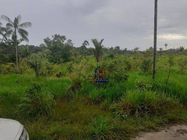 Sítio à venda, por R$ 400.000 - Área Rural de Porto Velho - Porto Velho/RO - Foto 2