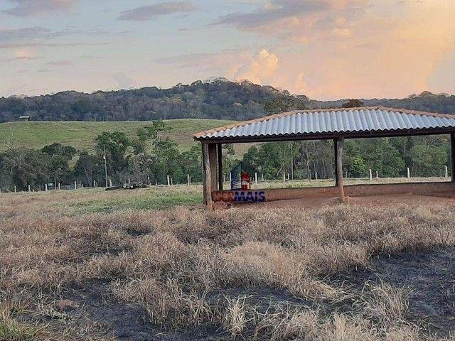 Fazenda à venda, por R$ 7.900.000 - Centro - Alta Floresta D'Oeste/RO - Foto 10