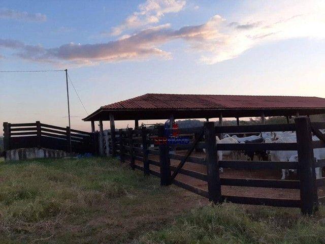 Fazenda à venda, por R$ 7.900.000 - Centro - Alta Floresta D'Oeste/RO - Foto 9