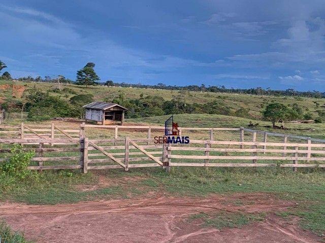 Fazenda à venda, por R$ 10.925.000 - Área Rural de Porto Velho - Porto Velho/RO - Foto 14