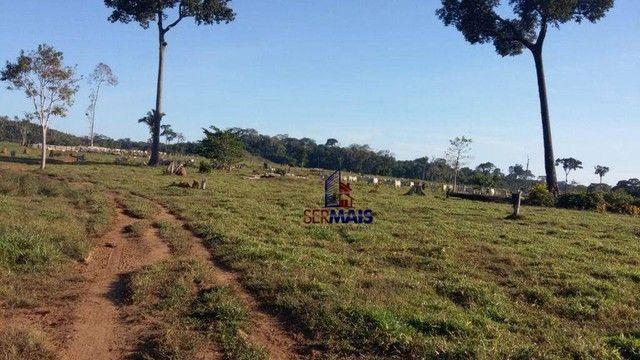 Fazenda à venda, por R$ 35.000.000 - Zona Rural - Machadinho D'Oeste/RO - Foto 6