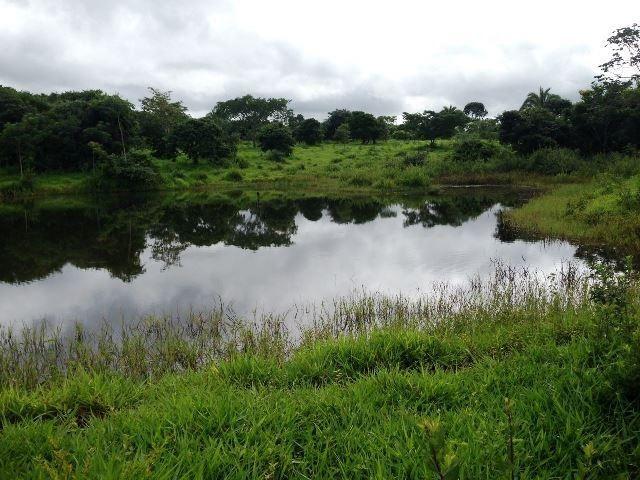 Fazenda 950 ha Rosário Oeste MT - Foto 11