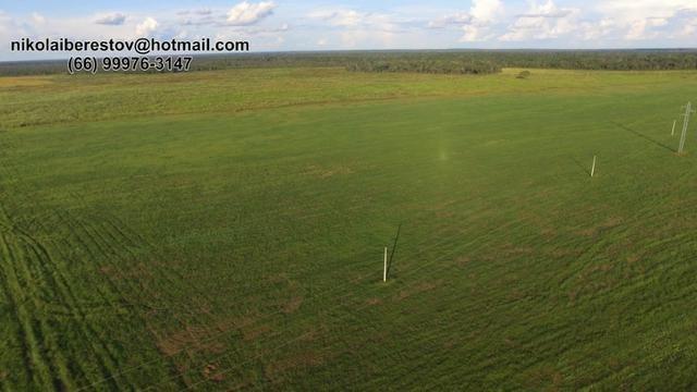 Fazenda 7.800 hectares nordeste mt nikolaiimoveis