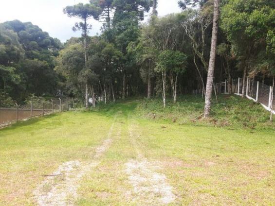 São José dos Pinhais - Chácara c/ 2328m² em condomínio fechado próx. BR 277 - Foto 4