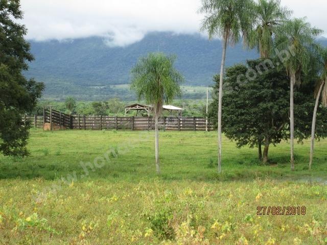 Fazenda com 881 hectares em Corumbá-MS para agricultura e pecuária - Foto 17