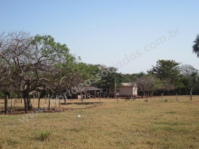 Fazenda com 881 hectares em Corumbá-MS para agricultura e pecuária - Foto 11
