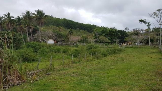 Vendo fazenda em Nova Almeida - Foto 16