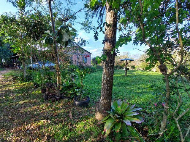 Velleda oferece belíssimo sítio 1 hectare todo arborizado, ideal para lazer - Foto 16
