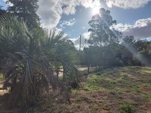 Velleda oferece B.A.R.B.A.D.A 2 hectares com cancha de futebol e frutíferas - Foto 4